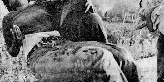 Maalot-massacre-victim-Facebook-796x400